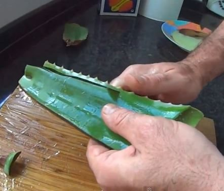 Remove Edges of Aloe Vera Leaves, how to make aloe vera gel at home
