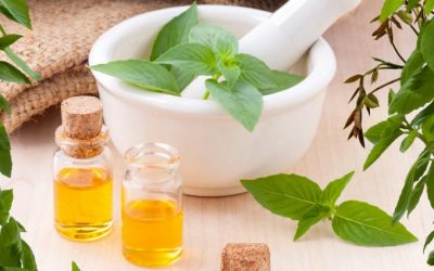 How Aromatherapy works in our body?