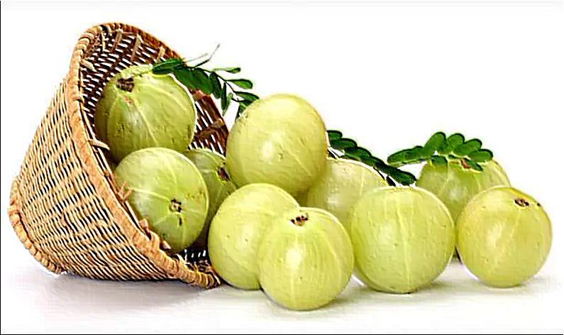 Benefits of Amla, indian gooseberry benefits,